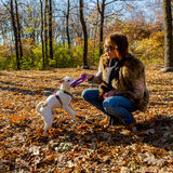 Woman playing with dog Royalty Free Stock Photography