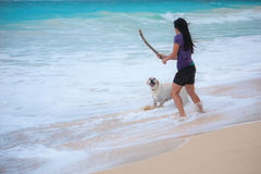 Woman playing with dog fetching stick Royalty Free Stock Photos