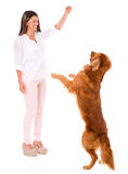 Woman playing with a dog Royalty Free Stock Photo