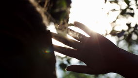 Woman playing with evening sun outdoor. Close-up back shot of a woman playing with evening sun outdoor. She moving hand and the sun twinkle between the fingers stock footage