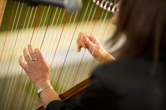 Woman playing the harp Royalty Free Stock Image