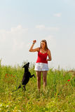 Woman playing with her dog in a meadow Royalty Free Stock Photo