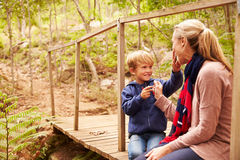 Woman playing with her son at wooden bridge Stock Photos