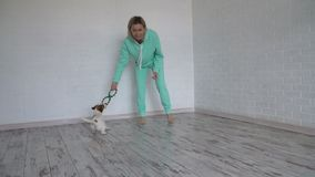 Woman playing with his dog at home stock video footage
