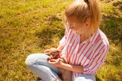 Woman playing pinscher ratter dog outside royalty free stock photo