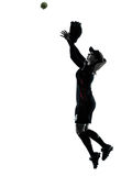 Woman playing softball players silhouette isolated Stock Image