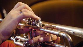 Woman playing trumpet. Trumpet player. Trumpeter playing music jazz instrument. Brass orchestra instrument. Woman plays Royalty Free Stock Images