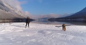 Woman playing tug of war with her dog. Woman playing tug with her stubborn Airedale Terrier at the beautiful snowy Lake Bohinj in Julian Alps, Slovenia stock video