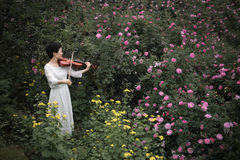 A woman playing the violin. A beautiful woman was playing the violin in the rose garden which was full of flowers stock photo
