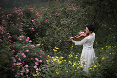 A woman playing the violin. A beautiful woman was playing the violin in the rose garden which was full of flowers royalty free stock photo