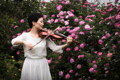 A woman playing the violin. A beautiful woman was playing the violin in the rose garden which was full of fog royalty free stock image