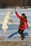 Woman playing with white dog in winter Royalty Free Stock Images