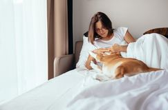 Woman plays with beagle dog in bed Stock Images