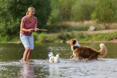 Woman plays with dog in the water Royalty Free Stock Photos