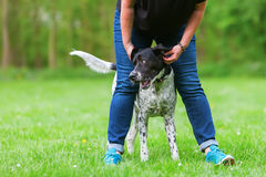 Woman plays with her dog outdoors Stock Photos