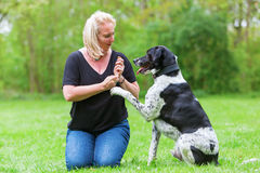 Woman plays with her dog outdoors Stock Image