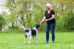 Woman plays with her dog outdoors Royalty Free Stock Photo