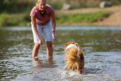 Woman plays with her dog in the water Royalty Free Stock Photography