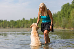 Woman plays with her labrador retriever in a lake Royalty Free Stock Image
