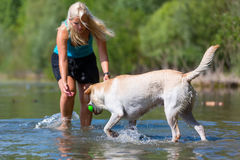 Woman plays with her labrador retriever in a lake Stock Images