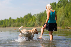 Woman plays with her labrador retriever in a lake Stock Photo