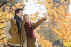 Woman pointing while standing with man in park during autumn Stock Photography