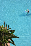 The woman in pool. With palm trees on coast Stock Images
