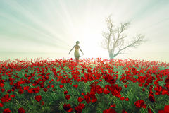 Woman on the poppy field Royalty Free Stock Photo