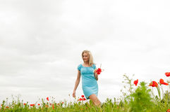 Woman in poppy field Stock Photos