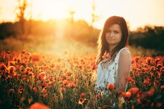 Woman on poppy field. Beautiful young girl on poppy field with dress royalty free stock photo