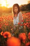Woman on poppy field. Beautiful young girl on poppy field with dress royalty free stock photography
