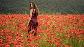 Woman in poppy flower field, harvest Beauty summer spring poppy seed. Drug and love intoxication, opium, medicinal. Opium poppy, botanical plant, ecology stock image