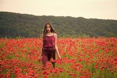 Woman in poppy flower field, harvest. royalty free stock photos