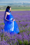 Woman portrait in lavender Royalty Free Stock Photo