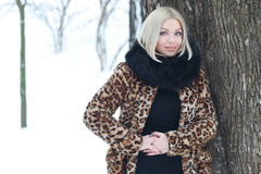 Woman portrait in winter Stock Photography