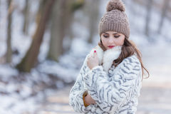 Woman Portrait. Winter portrait of a young pretty woman Stock Image