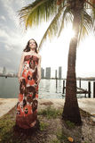 Woman posing in a beautiful dress Royalty Free Stock Images