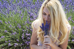 Woman posing in lavender field Stock Image
