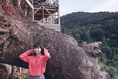 Woman Posing for Photo Shoot in Front of a Huge Tree