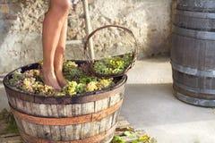 Woman pounding grapes Stock Photo