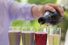 Woman pouring of champagne into  flute glasses,  green lawn backgr Stock Photography