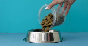 Woman pouring dog food into bowl
