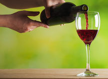 Woman pouring red wine Royalty Free Stock Image