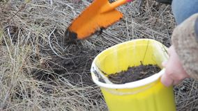 Fills a bucket with earth soil stock video