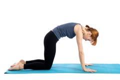 Woman Practices Yoga stock image