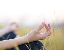 Woman Practices Yoga on the Meadow Royalty Free Stock Images