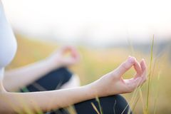 Woman Practices Yoga on the Meadow Stock Images