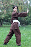 Woman practicing exercise  tai chi Royalty Free Stock Photo