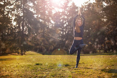Woman practicing morning meditation in nature Royalty Free Stock Images