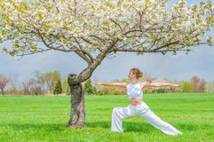 Woman is practicing yoga, doing Virabhadrasana exercise, standing in Warrior pose near tree royalty free stock photography